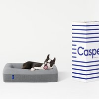 Casper® Dog Bed - Large