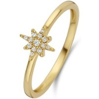 Diamond Point Geelgouden ring 0-05 ct diamant Cosmic