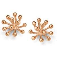 Casa Jewelry Porcu-2 oorknopjes verguld