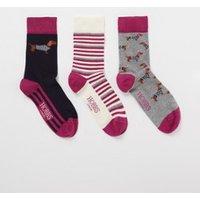 Hobbs Dachshund sokken met print in 3-pack giftbox