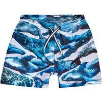 Molo Niko zwemshorts met UV-bescherming
