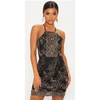 Black Embroidered Lace Scallop Hem Bodycon Dress