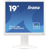 "iiyama ProLite B1980SD-W1 - LED monitor - 19"""