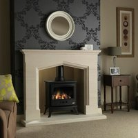 Tiger Gas Stove with Log Effect