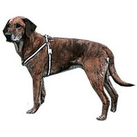 Trixie ReFlash dog harness S (35-50 cm)