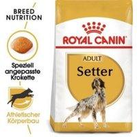 Royal Canin Breed Setter Adult (12 kg)