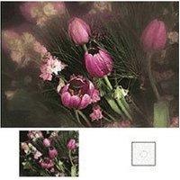 Cokin X071 C Spot WA Incolour 2 Square Filter
