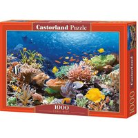 Castorland Coral Reef Fishes