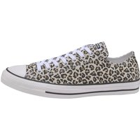 Idealo ES|Converse Chuck Taylor All Star Leopard Low Top black/driftwood/light fawn