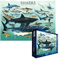 Eurographics Puzzles Sharks
