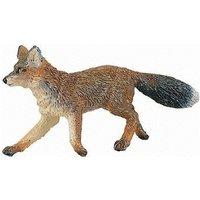 Safari Wild Safari North American Wildlife Fox