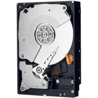 Western Digital RE4 SATA II 250GB (WD2503ABYX)
