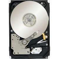 Seagate Constellation.2 SATA 500GB (ST9500620NS)