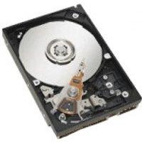 IBM NL SATA III SFF Hot Swap 500GB (81Y9726)