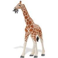 Safari Girafe (2706)