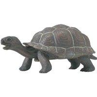 Safari Galapagos Tortoise Baby (260829)