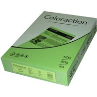 Antalis Coloraction (838A080S26)