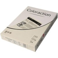 Antalis Coloraction (838A 120S 50)