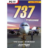 737 Professional (Add-On)