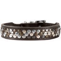 Hunter Arizona dog collar (42 cm)