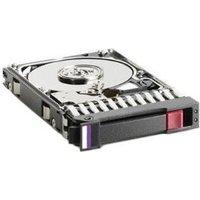 HP DP SAS 1TB (461289-001)