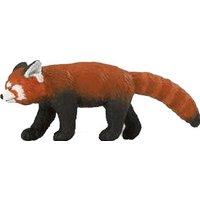 Safari Red Panda