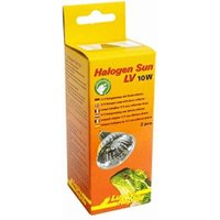 Lucky Reptile Halogen Sun LV 10W 2-Pack