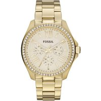 Fossil Am4482i Golden/Champagne
