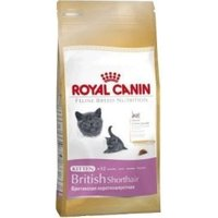 Royal Canin British Shorthair Kitten (10 kg)