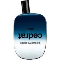 Comme des Garçons Blue Cedrat Eau de Parfum (100 ml)