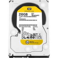Western Digital RE SATA III 250GB (WD2503ABYZ)