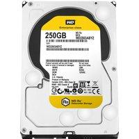 Western Digital RE SATA III 250GB (WD2503ABYZ)