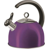 Morphy Richards Accents Whistling Kettle 2.5L Plum