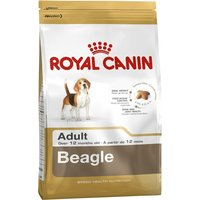 Royal Canin Beagle Adult (12 kg)