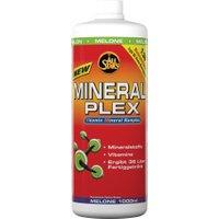 All Stars Mineral Plex 1000ml Melone