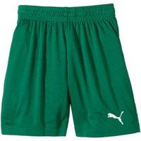 Puma Velize Shorts green