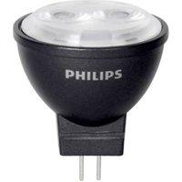 Philips MASTER LEDspot NV MR11