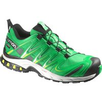Salomon XA Pro 3D GTX fern green/light grey/black