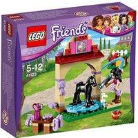 LEGO 41123