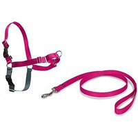 Petsafe Easy Walk Harness Raspberry
