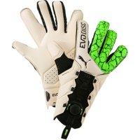 Puma evoDISC Goalkeeper Gloves