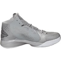 Under Armour Torch Fade gray wolf