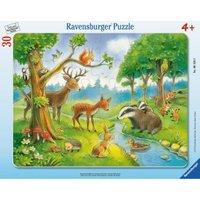 Ravensburger 61389