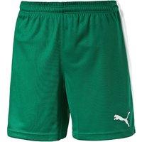 Puma Football Shorts Youth power green/white
