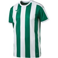 Puma Striped Football Jersey power green/white