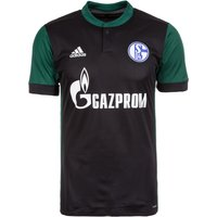 adidas Performance Mens Third FC Schalke 04 Jersey, Men, Fc Schalke 04 Third Trikot, BlackCgreen, S