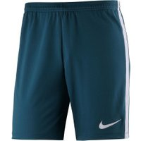 Nike Dry Academy Shorts blustery/white