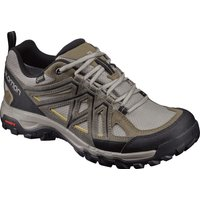 Salomon Evasion 2 GTX magnet/black/quiet shade