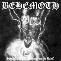 Behemoth - Sventevith (Ltd.Vinyl) - (Vinyl)