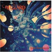 Buzzard - Sonic Renaissance (Black Vinyl) - (Vinyl)